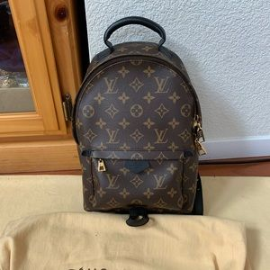 Excellent Preowned Louis Vuitton Palm Springs Pm